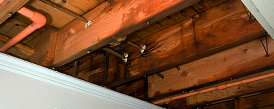 Water Damage Clean Up, Water Damage Restoration, Chicago, Evanston